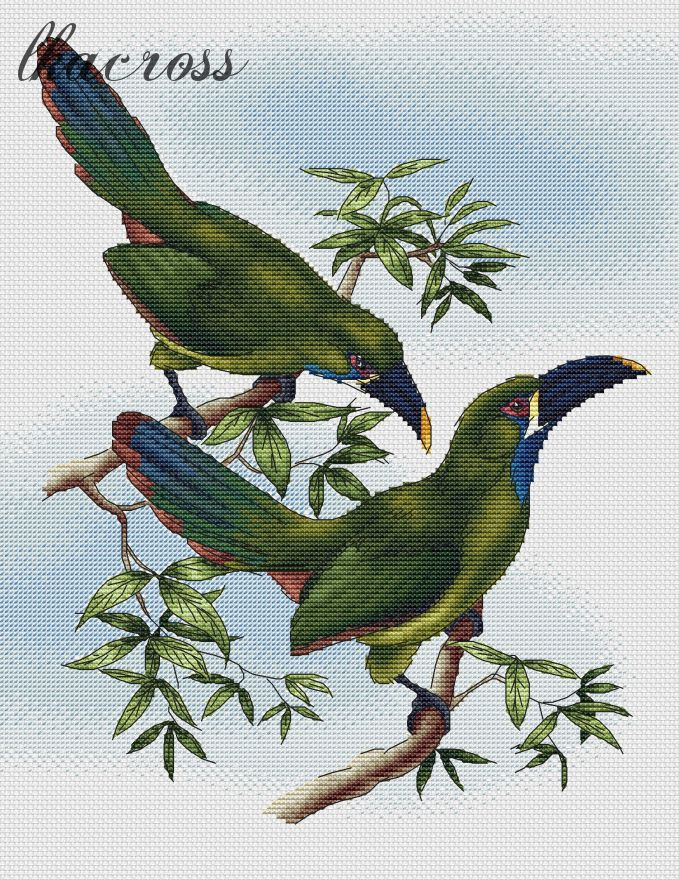 XStitch pattern Toucans